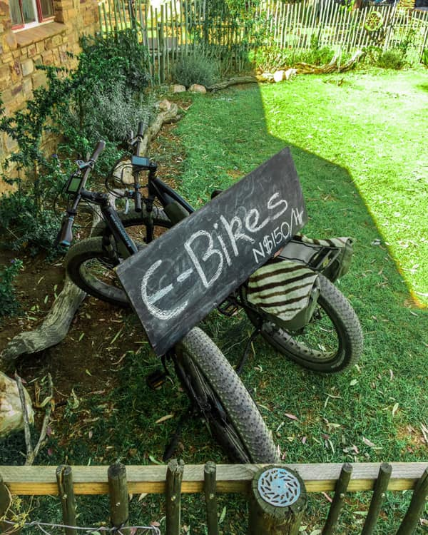 Mountainbike E-Bike Rental