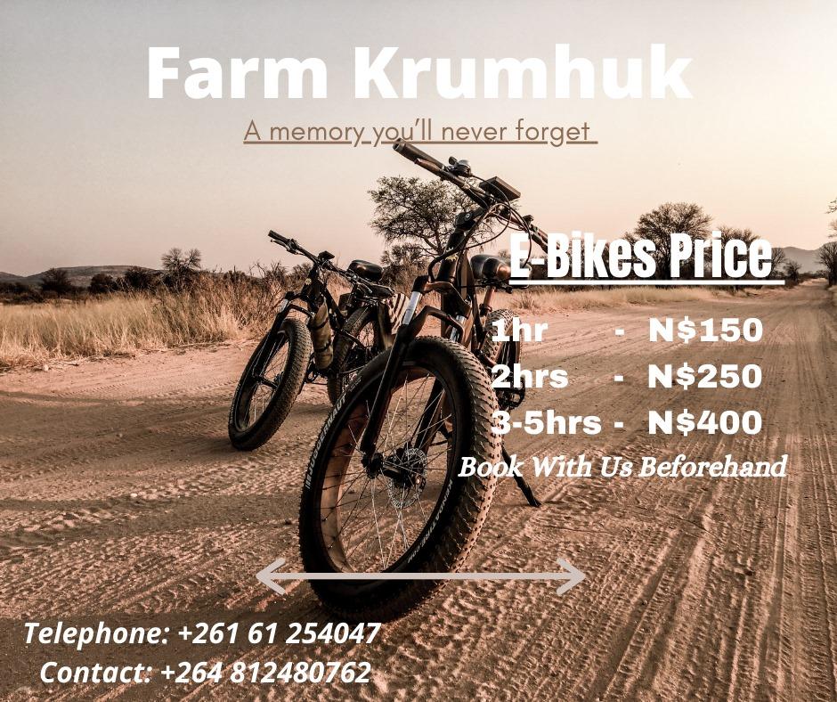 Krumhuk E-Bike Rental